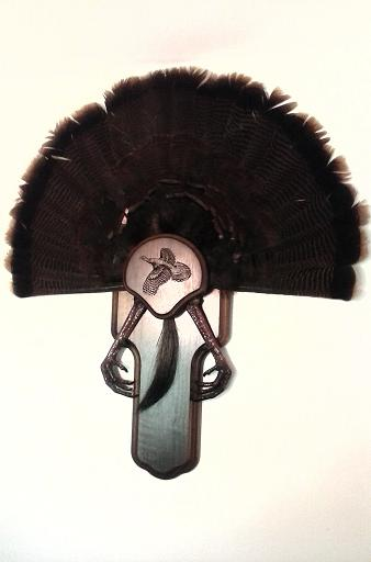 Turkey Fan mount
