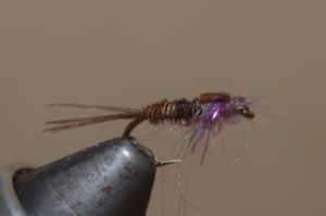 Hot Spot Pheasant Tail Nymph